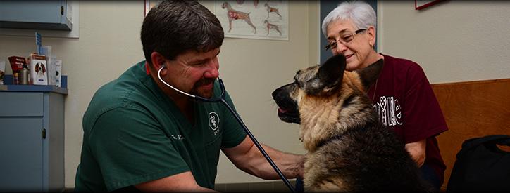 Deason Animal Hospital in Floresville, TX