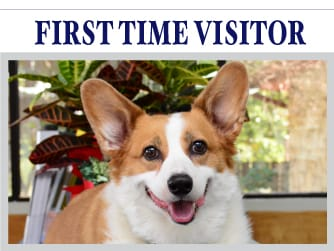first-time-visitor-up