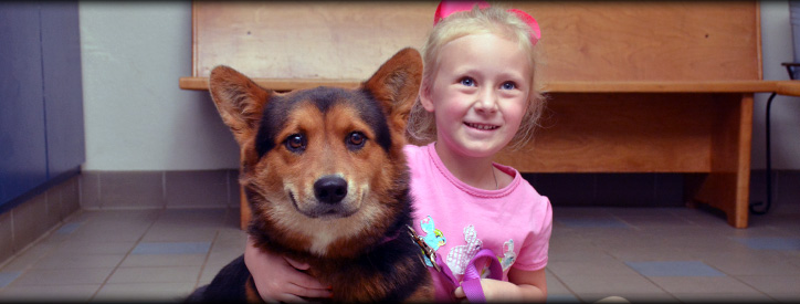 Veterinary Pharmacy, Pet Medication, Deason Animal Hospital, Floresville