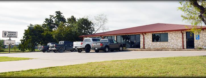 Veterinarian near Kenedy TX